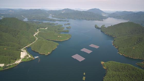 호수에 뜬 태양광 모듈 8000개…녹조 대신 치어떼 몰려든다