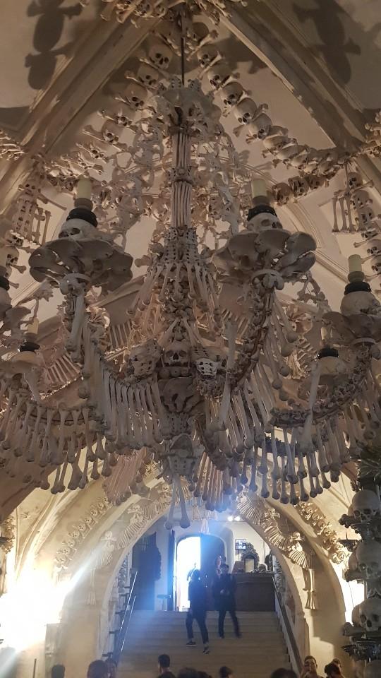 해골성당 천장에 걸려 있는 샹들리에. 실제 인간의 해골과 뼈로 만들어졌다.