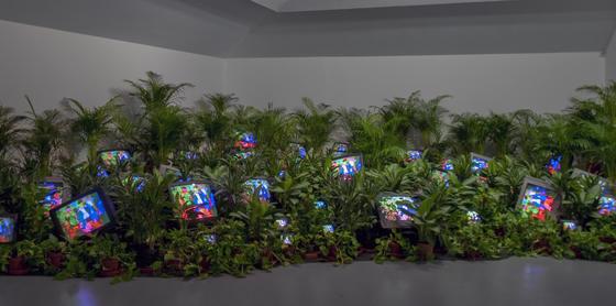 백남준의 설치작품 'TV 가든 1974/2002년' TV Garden 1974-1977 (2002) Single-channel video installation with live plants and color television monitors; color, sound  Courtesy Kunstsammlung Nordrhein-Westfalen, Dusseldorf. [사진 테이트 모던]