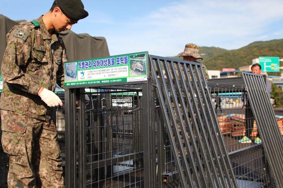 16일 강원 화천군에서 군 장병들이 아프리카돼지열병(ASF) 매개체로 의심되는 멧돼지를 잡기 위한 포획 틀을 화천군으로부터 전달받으면서 사용방법을 익히고 있다. [뉴스1]