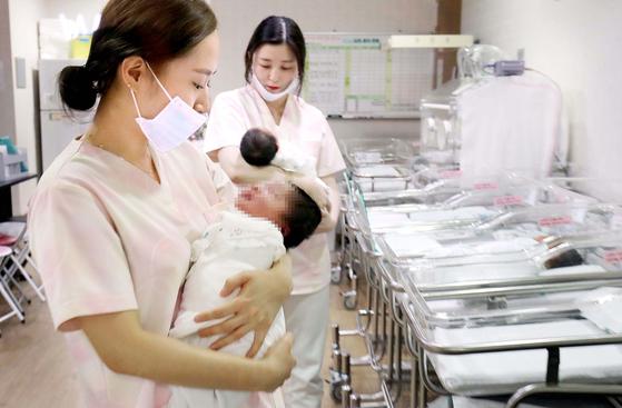 지난해 대전의 한 산부인과 신생아실에서 갓 태어난 아기들이 간호사들의 보살핌을 받고있다. [중앙포토]