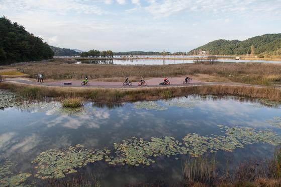 강원도 고성에서는 3월부터 11월까지 공짜로 자전거를 탈 수 있다. 고성군이 송지호와 화진포에서 무료 자전거 대여소를 운영한다. 두 호수 모두 1시간이면 둘레길을 한 바퀴 돌 수 있다. 화진포 둘레길에 있는 금강습지에서 라이딩을 즐기는 사람들.