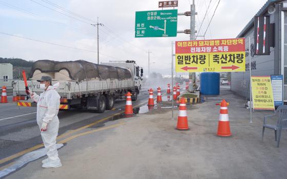지난 14일 오전 강원 철원군 갈말읍 지포리 거점소독시설에서 일반차량들이 소독을 받고 있다. [뉴스1]