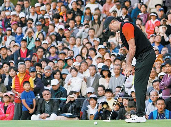 타이거 우즈가 마지막 홀에서 우승 퍼트를 하고 있다. 이번 대회 그의 스윙과 퍼트는 매우 부드러웠다. [AP=연합뉴스]
