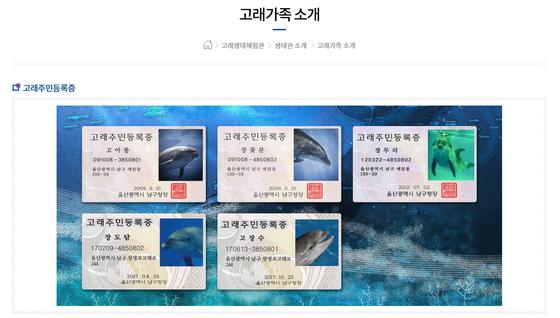 [장생포 고래생태체험관 홈페이지 캡쳐]