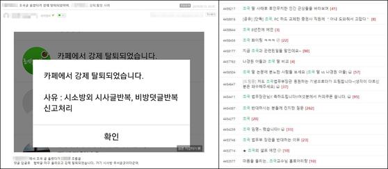 한 맘카페에 조국 전 법무부 장관 비판글을 올린 뒤 강퇴 당했다는 내용의 온라인 게시물(왼쪽). 다른 맘카페에 게시된 조 전 장관 지지 게시물. [네이버 카페 캡쳐]