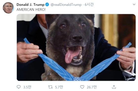 도널드 트럼프 미국 대통령이 31일 자신의 트위터에 IS 알바그다디 제거작전에서 공을 세운 군견에 명예대훈장을 수여하는 합성사진을 게재했다. [트럼프 트위터 캡처]