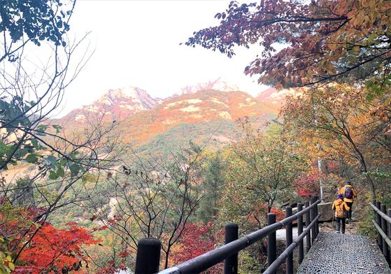유럽 사람들은 서울 한복판에 제법 오르기 힘든 높은 산이 있는 것에 놀란다. 산이 많은 이곳엔 산신령이 산다. 본 사람은 없어도 누구나 알고 있는 존재가 산신령이다. 사진은 북한산 의상봉 국녕사 단풍. [중앙포토]