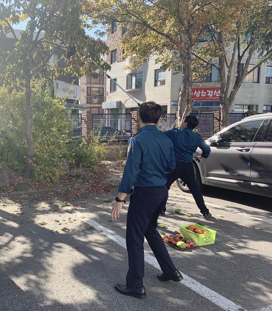 강릉경찰서 직원들이 지난달 30일 경찰서 내에 있는 감나무에서 감을 수확하는 모습. [사진 강릉경찰서]