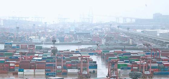 수출 컨테이너들이 모여 있는 부산항 신선대부두의 모습. [뉴스1]
