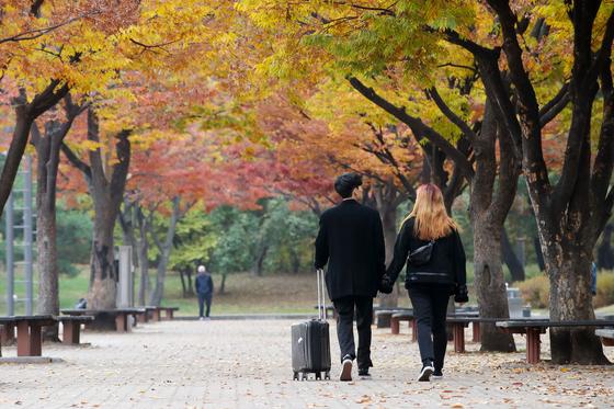 10일 오후 서울 여의도공원에서 시민들이 만추를 즐기고 있다. 월요일인 11일은 오전에 비가 그치고 늦은 오후에 개겠다. [연합뉴스]