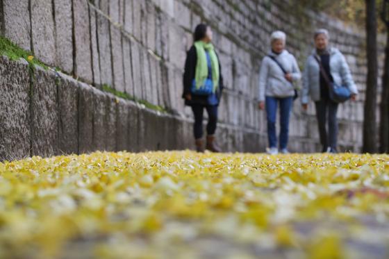 가을비가 내린 11일 오전 서울 중구 덕수궁 돌담길에서 시민들이 떨어진 낙엽을 밟으며 걸음을 옮기고 있다. [연합뉴스]