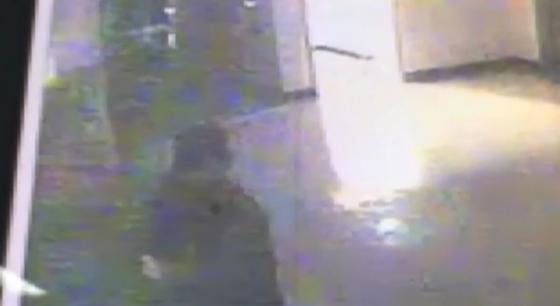 경기도 안성의 한 기숙학원에서 20살 재수생 A씨가 여자 기숙사에 침입한 모습이 CCTV에 포착됐다. [YTN]