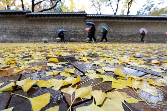 전국적으로 흐리고 비가 내린 17일 서울 중구 덕수궁 인근에서 시민들이 우산을 쓰고 발걸음을 재촉하고 있다. [뉴스1]