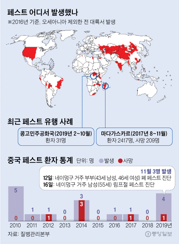페스트 어디서 발생했나, 최근 페스트 유행 사례, 중국 페스트 환자 통계. 그래픽=김영옥 기자 yesok@joongang.co.kr