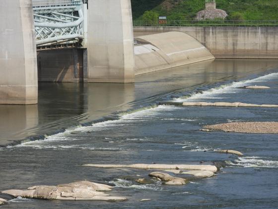 지난 8월 수문을 개방한 금강 공주보에서 강물이 빠르게 흐르고 있다. [중앙포토]