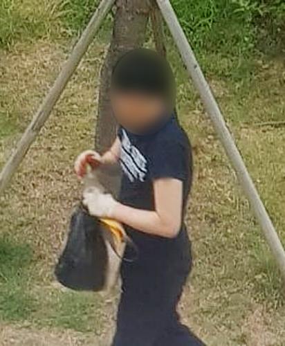 사건 당시 현장 폐쇄회로(CCTV)에 잡힌 정모씨가 세제로 추정되는 물질이 묻은 고양이 사료를 준비하는 모습. [연합뉴스]