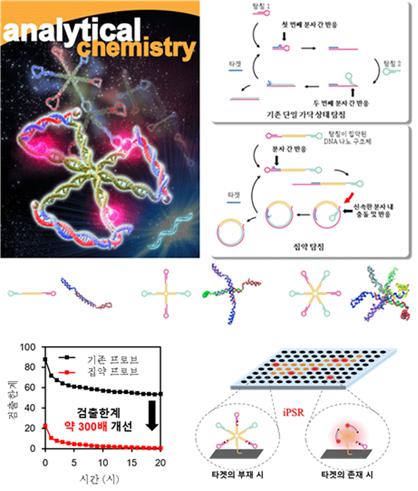 다수의 탐침이 집약된 DNA 나노 구조체와 iPSR 응용의 예시.