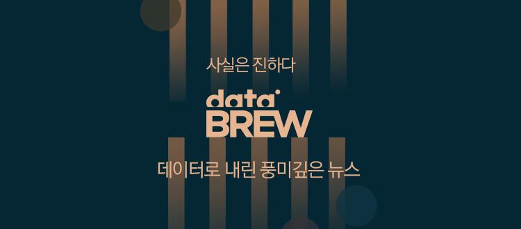 데이터브루