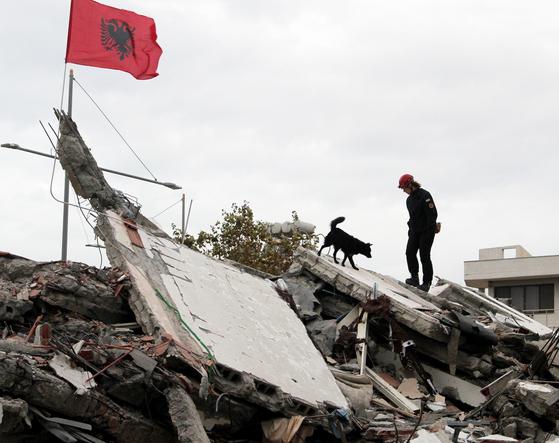 28일 사고현장에 도착한 크로아티아 구조대원과 구조견이 알바니아 두러스에서 무너진 건물잔해를 살펴보고 있다. 이번 지진으로 40명이상의 사망자가 발생했다.[EPA=연합뉴스]