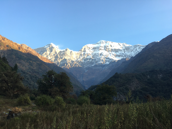 구르자카니(2620m) 마을 목초지에서 바라본 구르자히말(7193m) 남벽. 김영주 기자