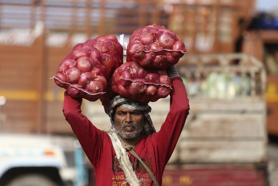 지난 10월 29일 인도 잠무에서 짐꾼이 양파를 나르고 있다. 인도는 양파 흉작으로 가격이 폭등해 농민과 소비자의 불만이 커지고 있어 모헨드라 모디 총리에게 정치적인 부담을 주고 있다. [AP=연합뉴스]