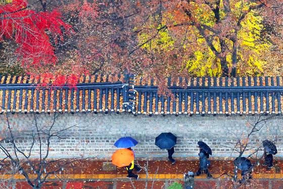전국 대부분 지역에 비가 내린 1일 오후 서울 중구 덕수궁 돌담길에서 우산을 쓴 시민들이 떠나가는 가을 정취를 느끼며 낙옆 쌓인 기와 아래를 걸어가고 있다. 비가 그친 2일은 전국의 기온이 뚝 떨어지겠다. [뉴스1]
