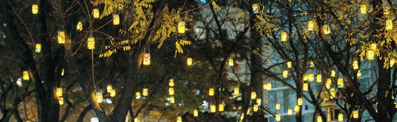 시민 5000명이 함께 힘을 모아 만든 소원 등불이 덕수궁 돌담길 일대를 환하게 밝히고 있다. 한성자동차가 지원한 소원 등불은 태양광을 받아 자동으로 온·오프되는 친환경 에코 불빛이다.