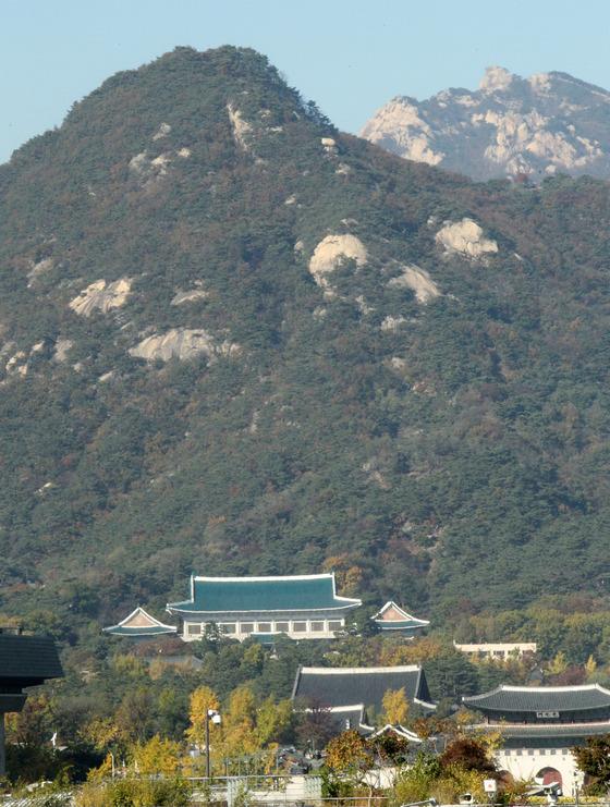청와대 뒤편 북악산. [중앙포토]