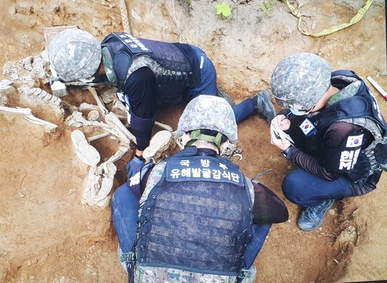 국방부 유해발굴 감식단이 비무장지대 화살머리고지에서 발굴 작업을 하고 있다. 정교한 발굴을 위해 수작업은 필수다.