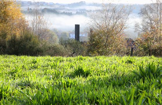 비가 막 그친 뒤 풍경. 마을에서 안개가 올라왔고 풀밭의 빗물은 햇빛을 받아 반짝였다.