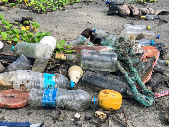 버려진 플라스틱 옷걸이에서는 각종 유해물질이 흘러나온다. 분해되는 데는 1000년 이상이 걸린다. [사진 John Cameron on Unsplash]