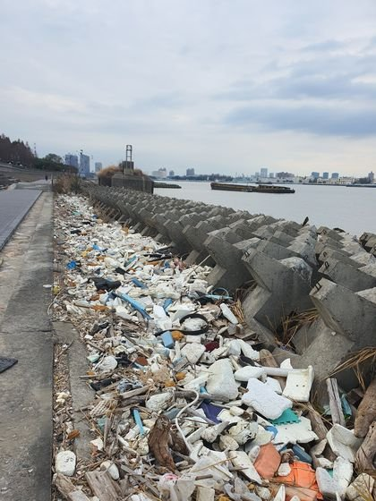 지난달 26일 찾은 상하이 빈장 산림공원 강변 산책길에 폐스티로폼, 플라스틱 등을 비롯한 각종 해양 쓰레기가 쌓여 있다. 진창일 기자