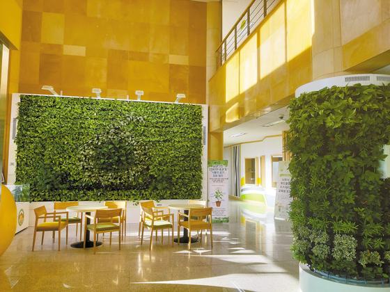 농식품부는 자연 친화적인 도시환경 조성, 도시민의 쉼 공간 제공, 농업의 가치를 알리기 위해 '자연家득' 사업을 수행할 지자체를 선정해 지원하고 있다. 사진은 나주시농업기술센터 원기둥과 벽면을 장식하고 있는 다양한 녹색 식물들. [사진 농식품부]