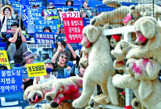 동물단체 회원들이 말복인 지난 8월11일 세종문화회관 앞에서 동물 불법도살 금지법 제정을 촉구하는 집회를 열고 있다. [뉴스1]