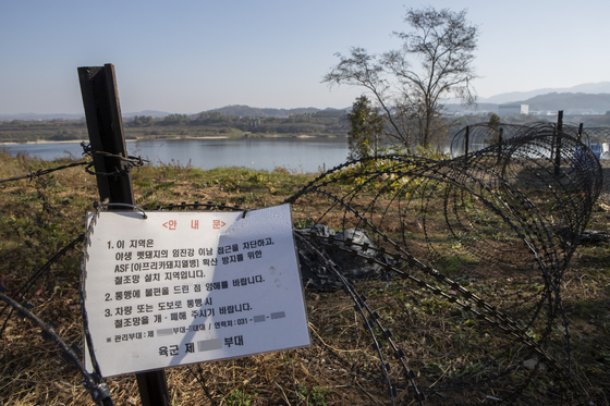 지난달 7일 경기도 연천군 임진강변에 아프리카돼지열병(ASF) 확산 방지와 야생멧돼지 이동을 막기 위한 철조망이 설치된 모습. [연합뉴스]