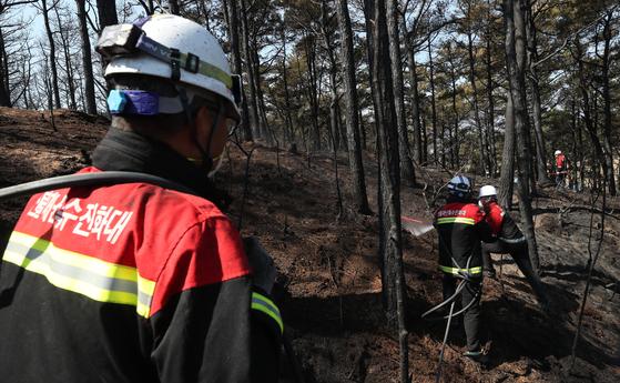 지난 4월 8일 고성군 토성면 용촌리에서 불이 나 산불재난특수진화대원들이 진화작업을 하고 있다. [연합뉴스]