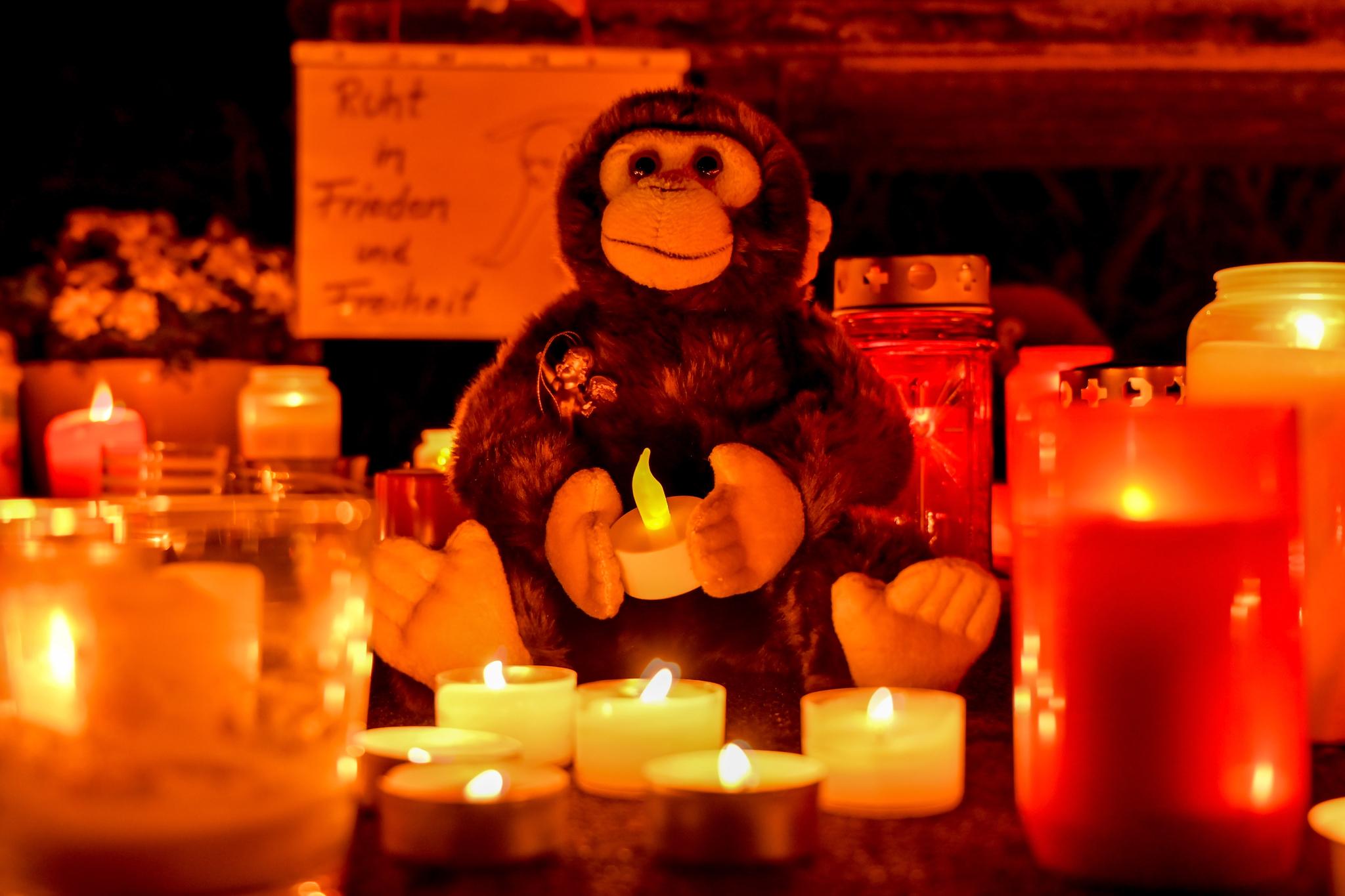 2020년 새해 첫날인 1일 화재가 발생한 독일 크레펠트 동물원 앞에 죽은 동물들을 추모하는 인형과 촛불이 놓여져 있다. 이날 발생한 화재로 인해 오랑우탄, 침팬지 등 동물 30마리 이상이 목숨을 잃었다. [EPA=연합뉴스]