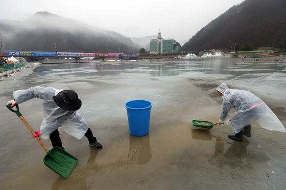 겨울비가 내린 7일 강원 화천군 산천어축제장에서 공무원들이 얼음낚시터 행사장으로 흘러 들어가는 물을 퍼내고 있다. [연합뉴스]