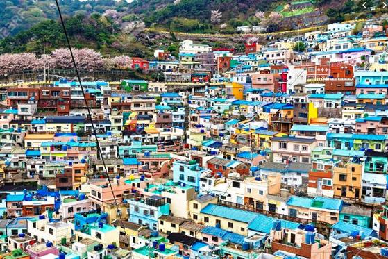 부산 감천문화마을 전경. [사진 부산시]