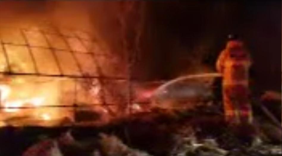 사슴벌레 농장에서 13일 화재가 발생했다. [사진 충북 진천소방서]