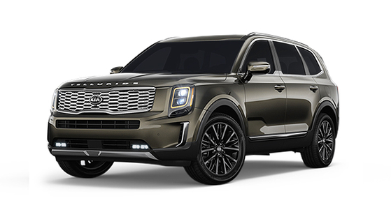 기아자동차 텔루라이드가 '2020 북미 올해의 차(NACOTY)' 유틸리티 부문에서 올해의 차로 뽑혔다. 지난해 2월 북미시장에 출시한 텔루라이드는 6만대 가까이 팔리며 상품성을 인정받고 있다. [사진 기아자동차]