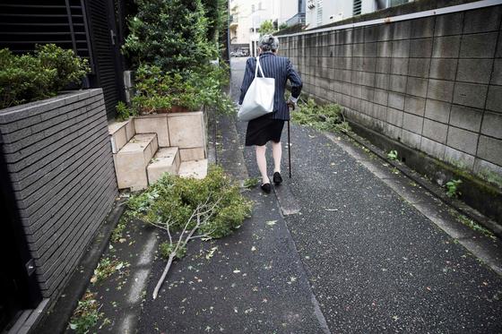 세계 제일의 초고령화 국가인 일본에선 노인 증가가 심각한 사회 문제를 야기하고 있습니다. 앞으로가 더 문제입니다. 재정 위기를 비롯한 시한폭탄이 곳곳에서 돌아가고 있기 때문이죠. 지난해 9월 태풍이 휩쓸고 간 도쿄의 골목길을 위태롭게 걷고 있는 사진 속 노인의 모습이 일본사회의 어두운 미래를 연상케 합니다.[AFP=연합뉴스]