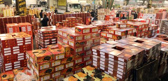 지난 1월 서울시 가락동 농수산물도매시장에서 상인들이 과일 경매를 준비하고 있다. [뉴스1]28일 서울 가락동 농수산물 도매시장 내 청과시장 상인들이 설 명절을 앞두고 과일 경매를 준비하느라 분주하다. 설을 앞두고 배와 사과 가격이 많이 올랐다. 배는 평년보다 약 30%,사과는 약 4.5%정도 오른 가격에 거래되고 있다. 2019.1.28. [뉴스1]
