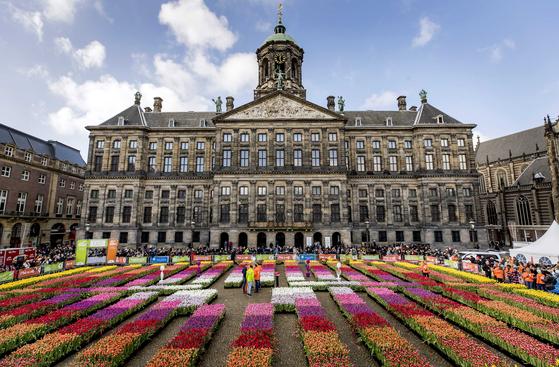 [서소문사진관]빨강 노랑 보라 …따뜻함이 피어나는 네덜란드 튤립 데이