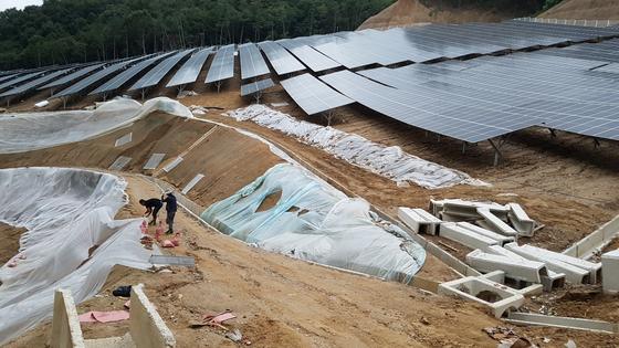 산지에 들어서는 태양광 발전시설은 산림 훼손으로 인해 토사 유출 등을 일으킨다. 온실가스를 줄이더라도 다른 환경 가치의 손실을 가져오게 된다. [중앙포토]