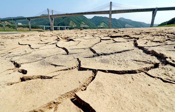 소양강 상류인 강원도 인제군 38대교 인근이 가뭄으로 메말라 있다. [중앙포토]