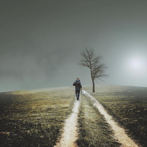 회장님이라 불리우던 그 분. 집밖에서 돌아가셔서 객사했다며 모두들 안타까워했지만 영혼은 가던 길을 쭉 가셨을 거란 생각에 오랫동안 기억에 남은 분이다. 걷다가 죽겠다는 말을 실천하신 것이다. [사진 Pixabay]