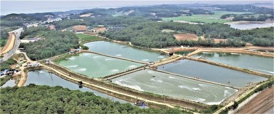연초에 한해 50구좌 한정으로 투자자를 모집 중인 어업회사법인 삼강의 바이오플락 양식장 전경.