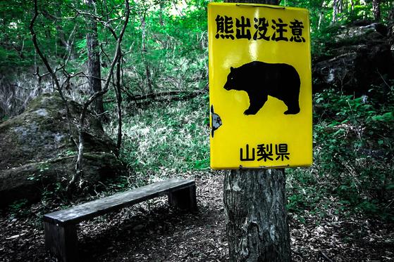 곰 출몰 주의라고 쓰여져 있는 간판 [출처: 트위터]